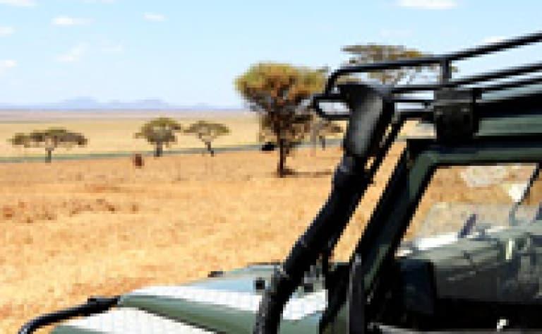 Safari dans l'Isimangaliso Wetland Park