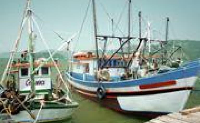 Croisière dans la baie de Paraty