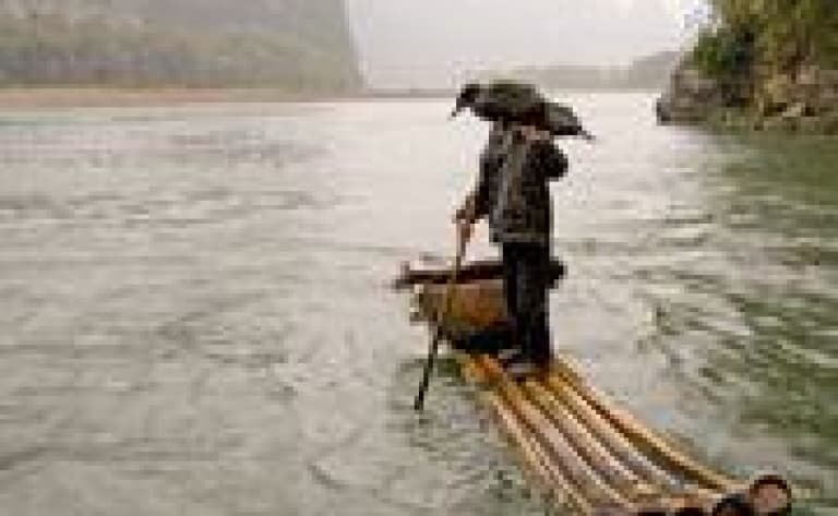 Pêche aux cormorans à Gifû