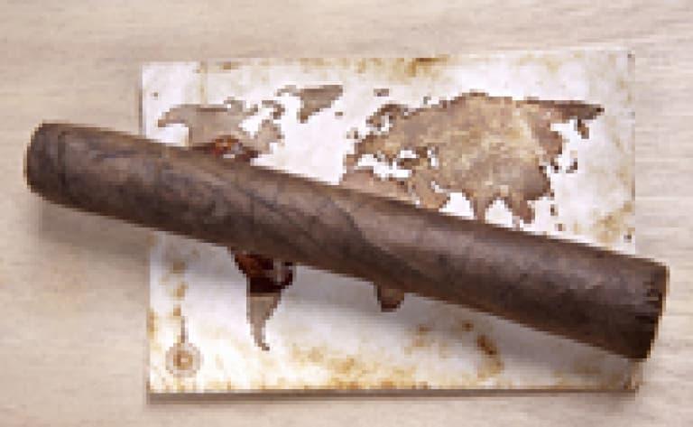 Visite d'une fazenda de tabac à Cachoeira