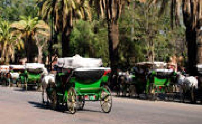 Balade en calèche dans la vieille ville d'Ava