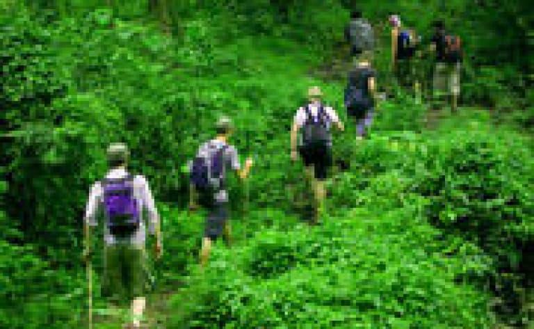 Randonnée dans la jungle vers la rivière aux Mille Lingams