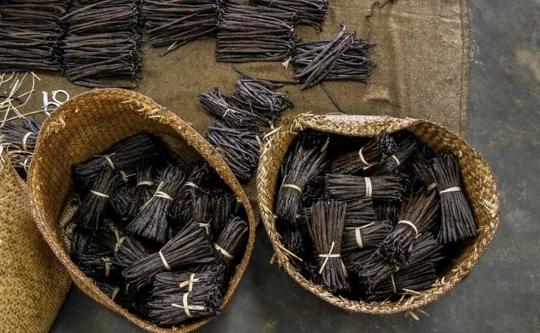 Vai, l'Art de vivre polynésien, Ile & Motu - Journée