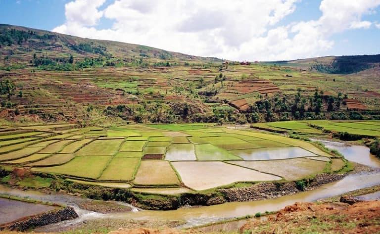 Terres rougeoyantes et rizières verdoyantes