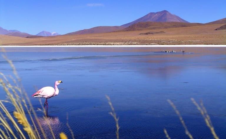Laguna Celeste et Volcan