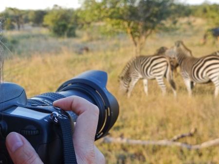 Découverte du bush à pied, safari et dîner avec danses traditionnelles