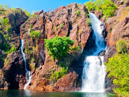 L'oasis de Litchfield National Park