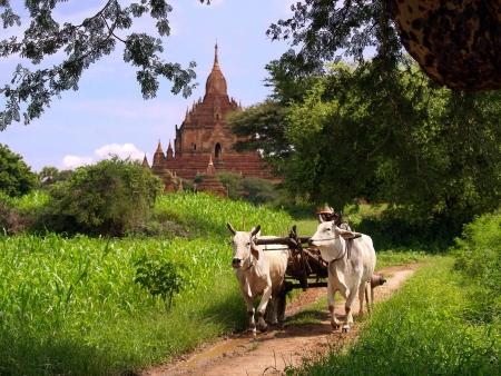 Bagan et ses alentours