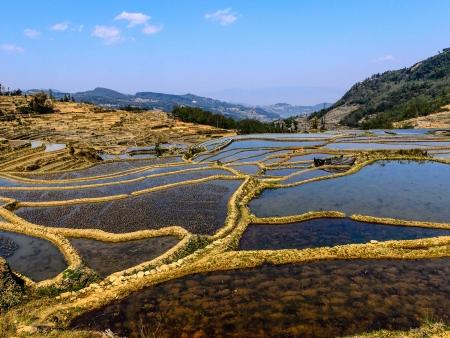 Yuanyang et ses damiers de rizières