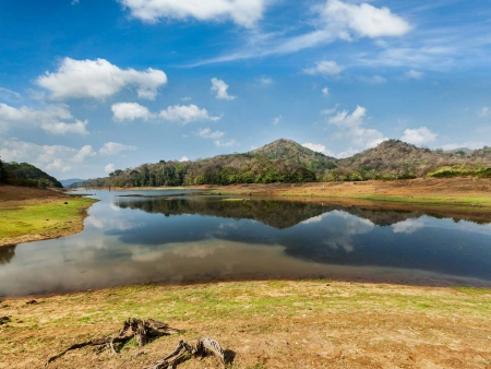 Parc National de Periyar