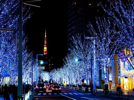 Vos premiers pas à Tokyo, Capitale de la démesure !
