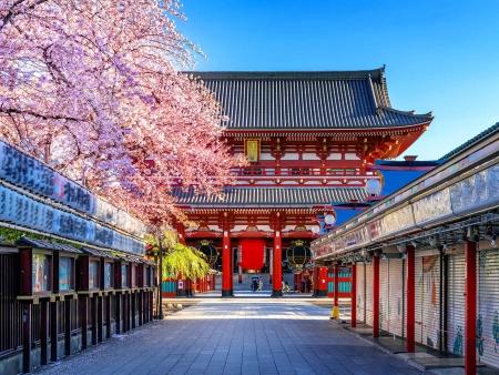 Tokyo, où modernité et histoire s'emmêlent !
