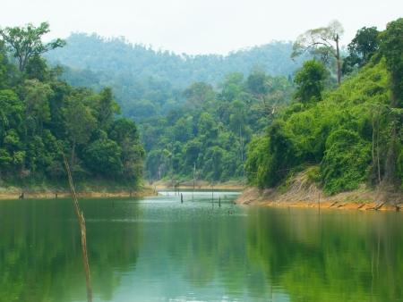 Sur le lac Temenggor