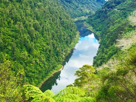 Découverte de Whanganui