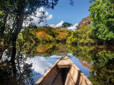 Au cœur de l'Amazonie