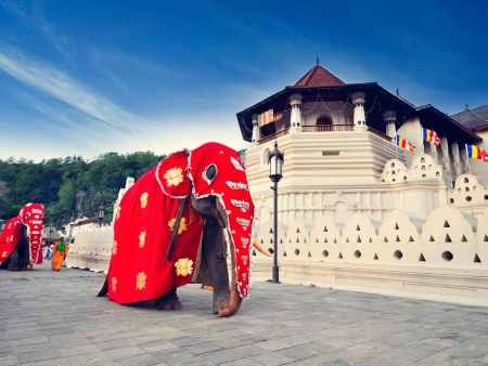 Le temple sacré de la Dent de Bouddha