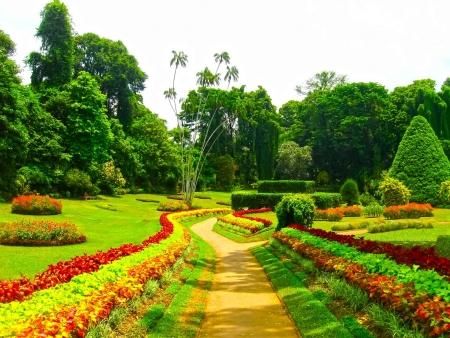 Jardins, temple et danses à Kandy