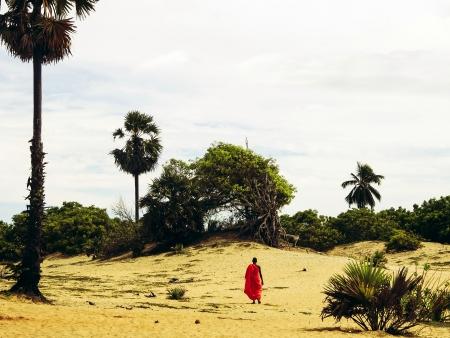 Sur les pas des sri lankais