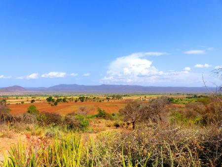 Karibuni ! Bienvenue en Tanzanie !