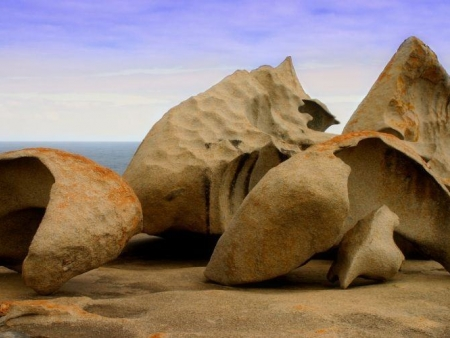 Visite de Kangaroo Island : journée libre