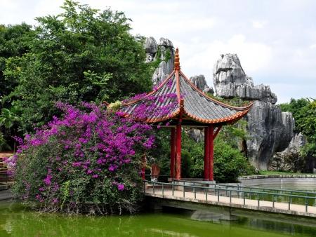 Arrivée et première découverte de Kunming