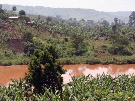 En route vers la république du Congo