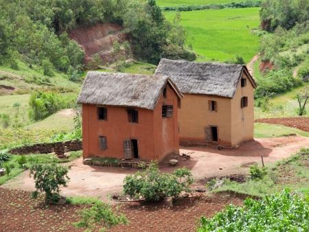 Balade entre plantation de thé et forêt luxuriante