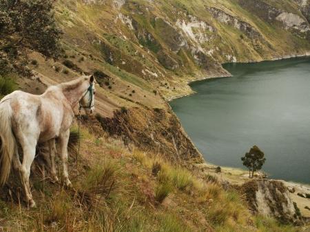 Début du trek dans les Andes Orientales