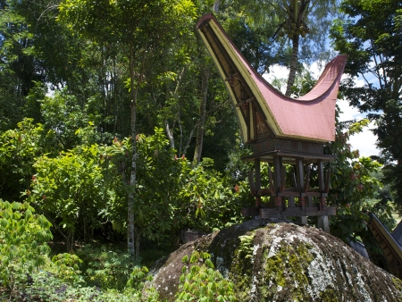 Au cœur du pays Toraja