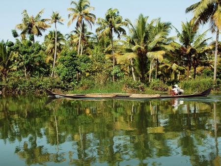 Au vert dans les backwaters