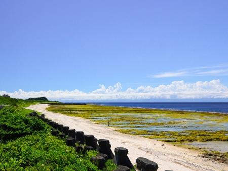 Green Island : en pleine nature