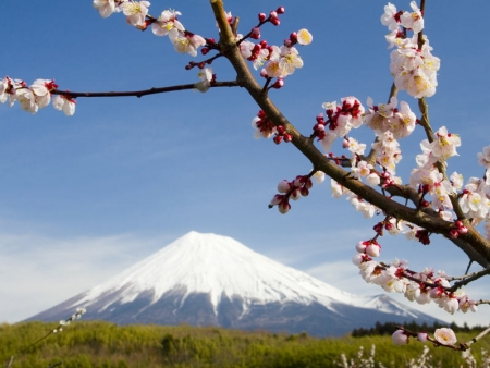 Mont Fuji