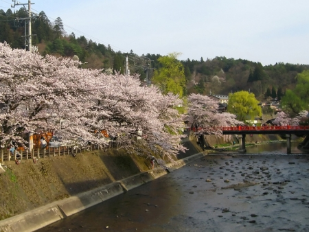 "Visit the cultural heritage of Takayama, ""little Kyoto"""