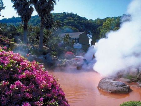 Discover a spa resort, Owakudani and the Museum of the Little Prince