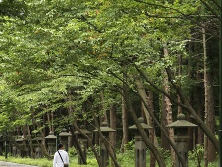 Discover Takayama and Hida no Sato Park