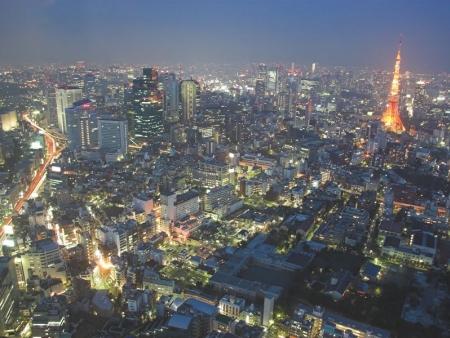 Shinjuku and Shibuya districts, Yoyogi Park
