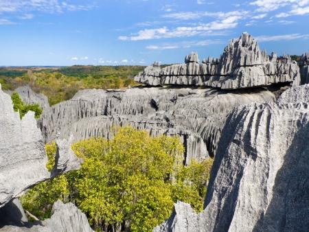 Pirogue à travers les grottes, et petits Tsingy