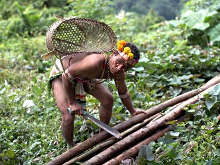 Une journée dans la jungle des Ibans