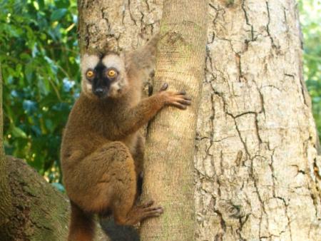 Départ pour Mayotte