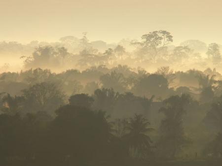 En Amazonie…