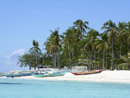 Plongée autour de l'île de Balicasag