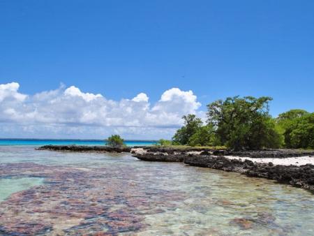 Excursion sur Tahaa, l'Ile Vanille