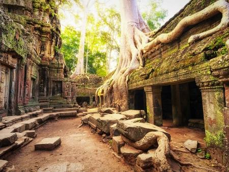 Premières saveurs d'Angkor