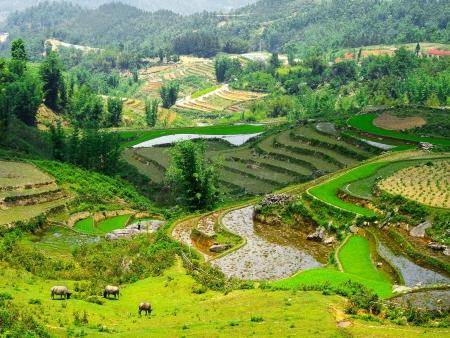 Retour à Hanoi via le col de Khau Pha
