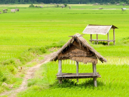 Cap sur le Laos !