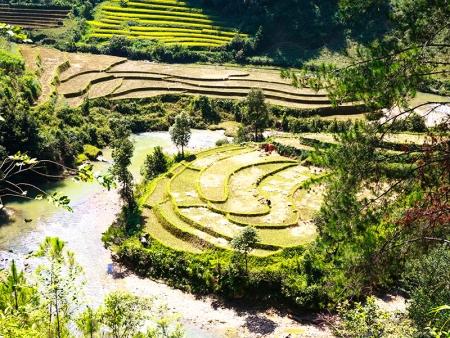 Au vert, à Muang La