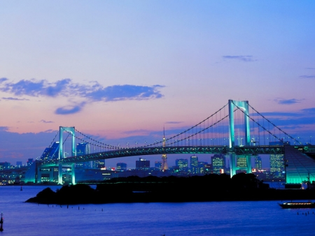 Admire an incredible view of Tokyo as you take a cruise on the Sumida River