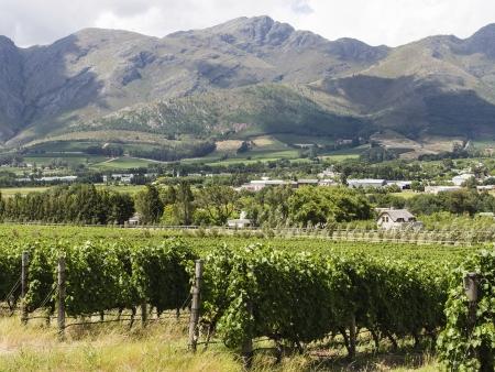 La route des vins !