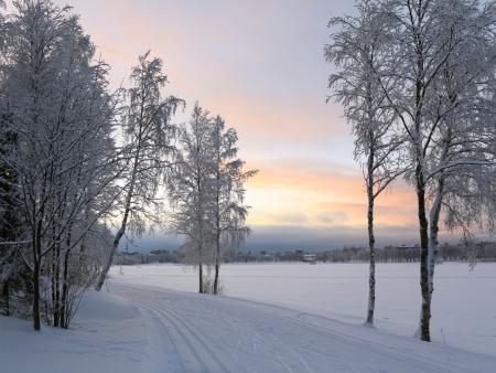 A l'horizon : la Laponie !