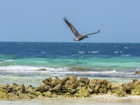 Départ pour le Belize